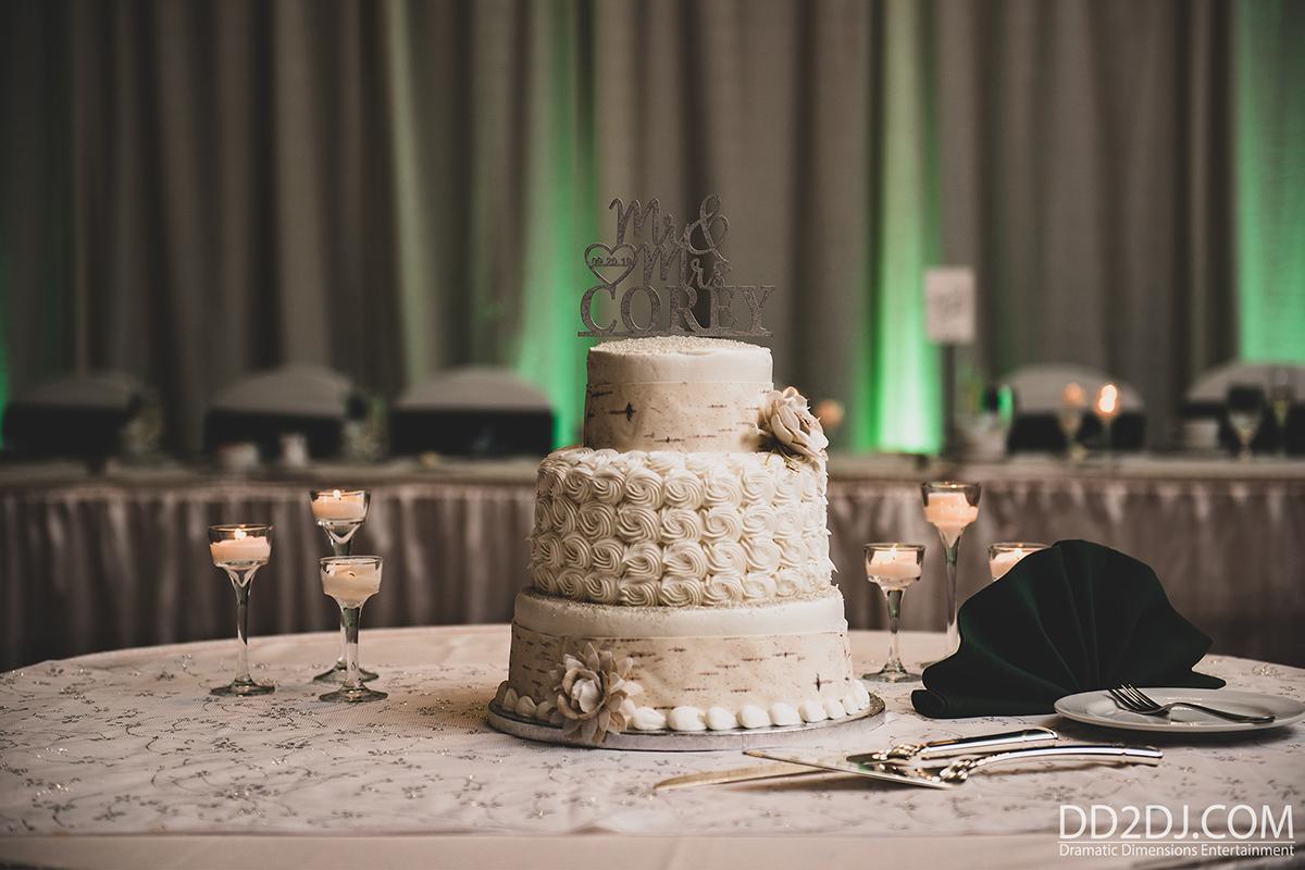 wedding cake, uplighting rental Novi MI Wedding photography