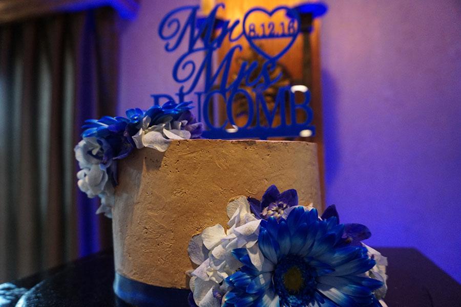 Top wedding Photographer Wayne County MI Wedding cake