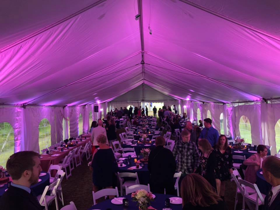Purple wedding tent uplighting rental in Michigan- event lights for rent